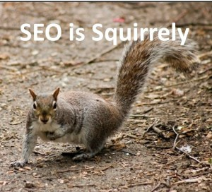 The Reason SEO Is So Squirrely - ITAcceleration