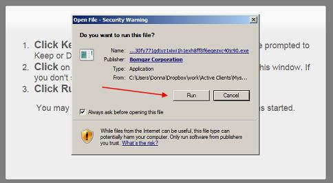 you'll be asked if you want to run the file